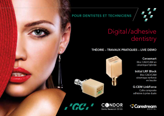 Digital / adhesive dentistry